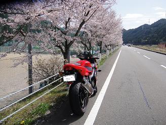 014 - コピー.JPG